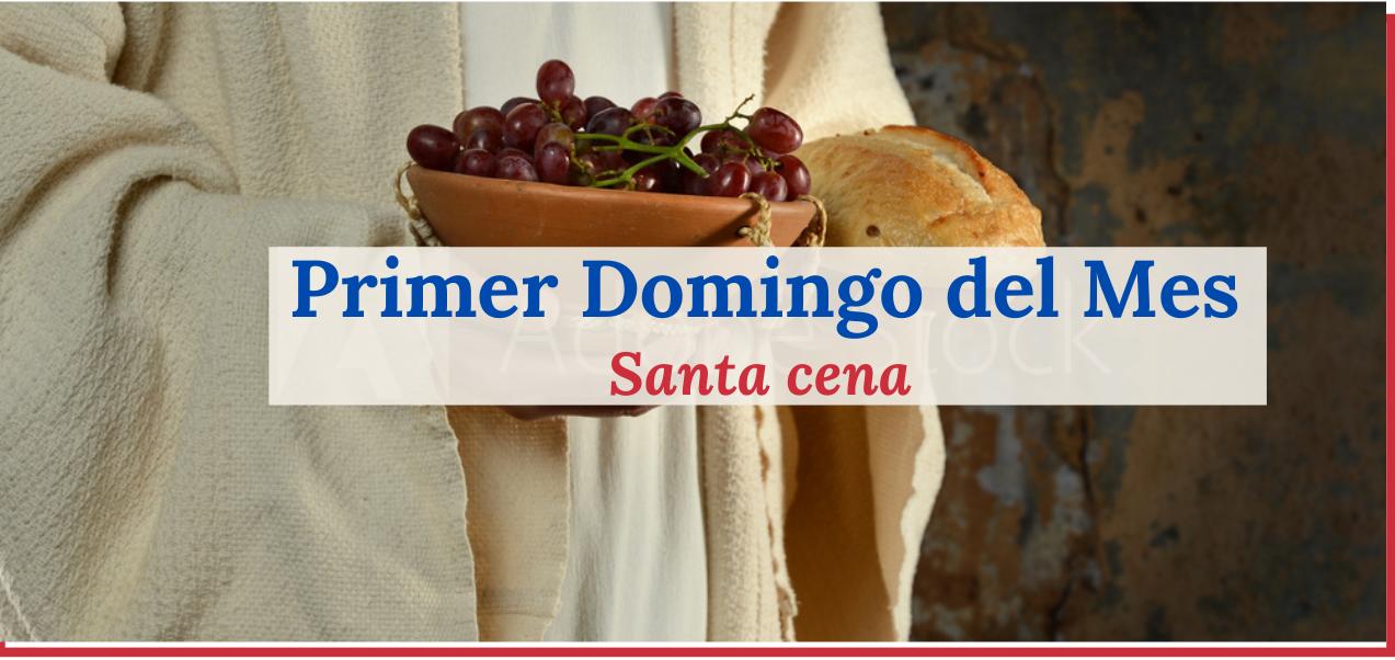 Verde-y-Color-Vino-Restaurante-Negocios_Publicidad-Sitio-Web